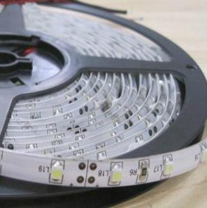 光子照明科技