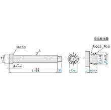 拉料杆---模具标准件及非标件专业加工  L
