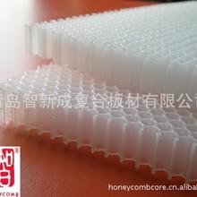 PP过滤芯用塑料蜂窝骨架 电子塑胶零件枢骨架 孔径12mm
