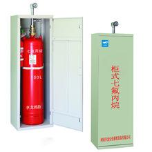 七氟丙烷灭火装置(双门柜) 河南供应商