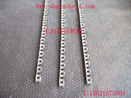侧边不锈钢片塑料链条-2(rs60P)