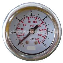供应不锈钢压力表,背部入口006.204001 耐震压力表销售批