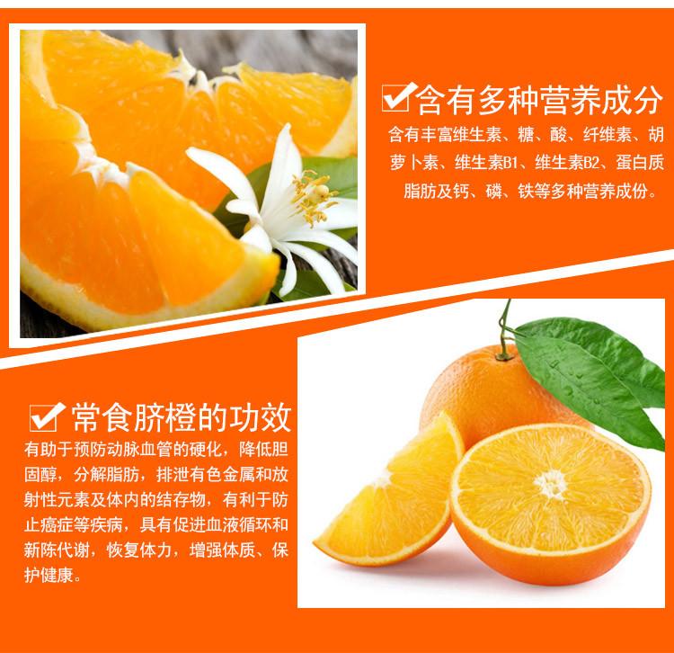 脐橙详情页_04