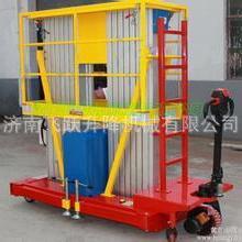 专业定制SJYL0.15-8双柱铝合金升降机,升降平台,升降舞台