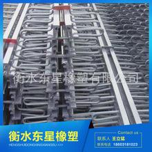 东星厂家精品热销 桥梁伸缩缝 桥梁伸缩缝装置 可批发