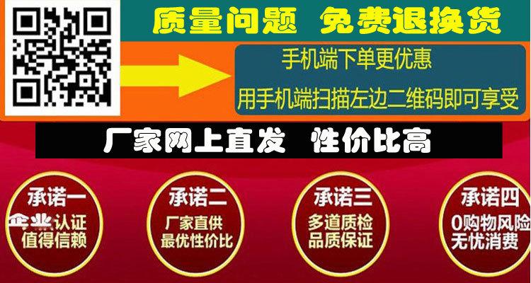 重庆松朗直销大型实验室立式电热鼓风干燥箱DHG-9070A