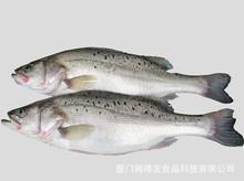 廠家直供 鱸魚腌制改良劑  肉類保水劑 水分保持劑 改良劑