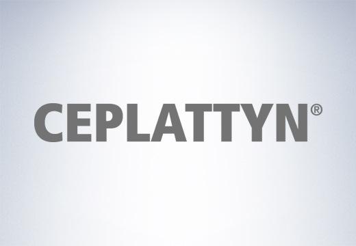 CEPLATTYN - 从福斯润滑科技粘性润滑剂