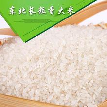 东北长粒香大米  新米农家自产大米米 黑龙江特产香米