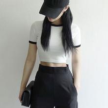 2019夏季精品韩版女士T恤衫 精梳棉短袖T恤女 打底衫批发打底衣