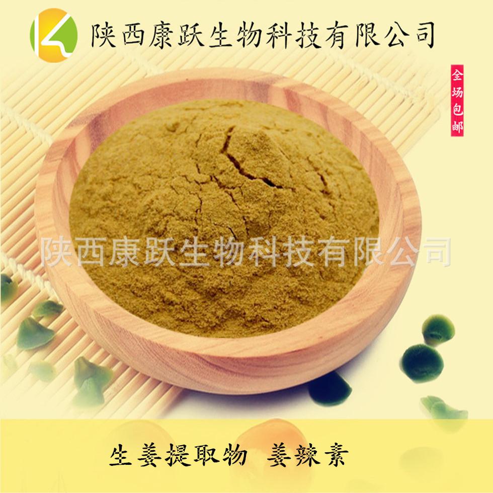 植物提取物5%姜辣素生姜现货直销姜辣粉厂家素天然生姜萃取一碗白米饭图片