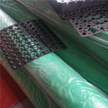 屋顶绿化凹凸型排水板 HDPE塑料排水板 地下室车库顶板 合肥厂家