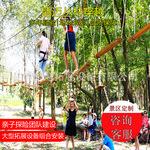 厂家直销丛林拓展训练设备树上探险滑索吊桥户外游乐设备儿童乐园