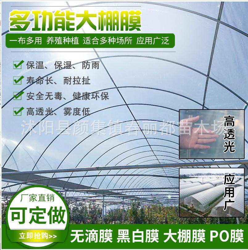加厚塑料布薄膜无滴膜农用透明地膜保温家用大棚膜防晒养殖黑白膜-