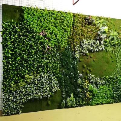 室内植物墙 植物_植物墙植物_人造植物墙怎么样