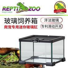 REPTIZOO AK系列迷你玻璃饲养箱蜘蛛角蛙守宫睫角守宫促销