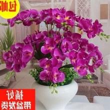 蝴蝶兰盆景假花客厅摆设装饰卧室内仿真绿植餐桌摆件大盆栽干花。