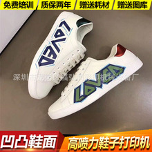 浙江温州鞋子LOGO图案3D印花设备 曲面弧面高落差成品鞋UV打印机
