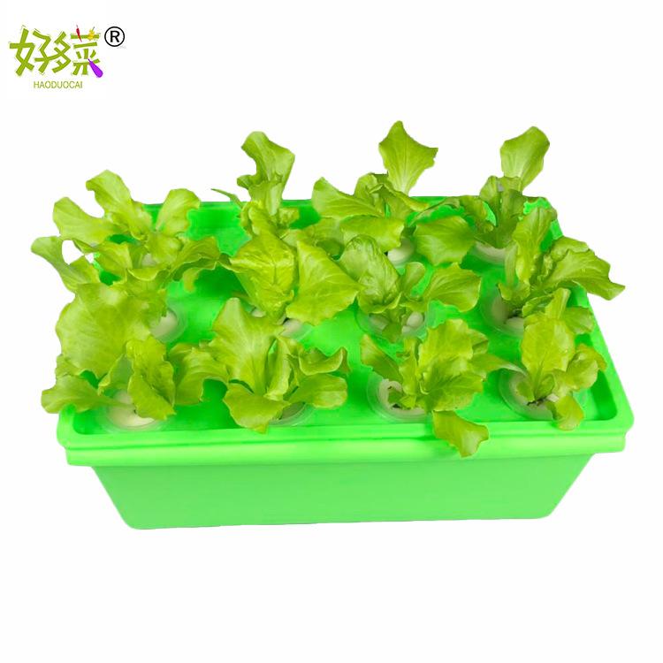 箱式无土栽培设备 水培蔬菜 阳台种植花卉 自动循环水耕机 花盆