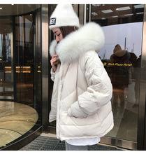 羽绒服女短款2019年新款韩版潮修身显瘦 狐狸毛领 90绒白鸭绒