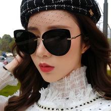 墨镜女士韩版潮蝶形大框太阳镜偏光ins街拍网红眼镜