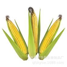 招商創業在家做 農產品手工加工致富創業小本合作加盟