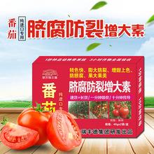 进口番茄脐腐病特效素防裂增大叶面肥靓果增甜上色水溶肥厂家批发