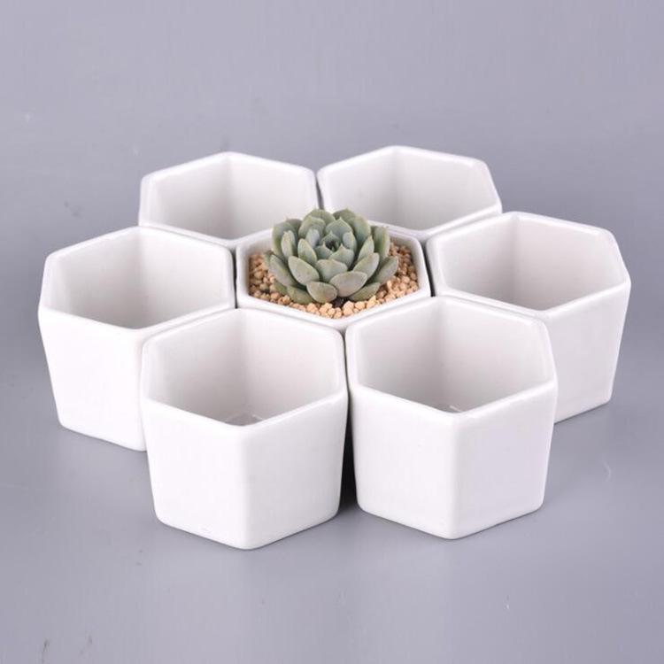 多肉花盆多肉植物白色陶瓷盆绿植物创意简约可配木托迷你小花盆