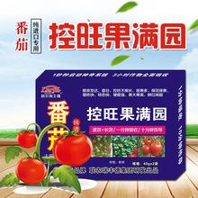 进口番茄专用控旺剂西红柿控旺素膨大增产硬果靓果叶面肥厂家批发