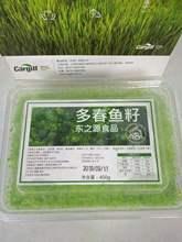 日式寿司料理食材 鳌霸400g小粒绿蟹籽 飞鱼子鱼籽酱 绿蟹子