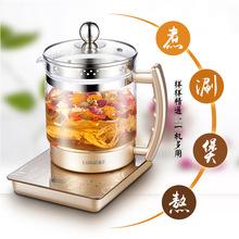 保温加玻璃电烧养生壶煮小热水家用烧水壶大容量小电磁炉煮黑茶电