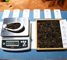 云南普洱茶散茶普洱大葉種野生古樹生茶定制加工茶業普洱云南批發