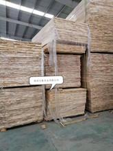廠家直銷楊木 優質楊木拼板 可來樣加工定制尺寸