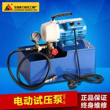 DSY-25 60手提式电动试压泵 PPR水管道试压机 双缸打压泵打压机