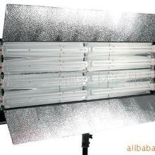 供应摄影三基色灯LH-2X455