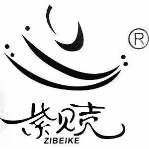 飞翔袜业品牌紫贝壳