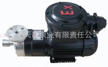 天津防爆磁力泵CQ/不銹鋼泵/小流量磁力泵/食品泵/無泄漏泵/