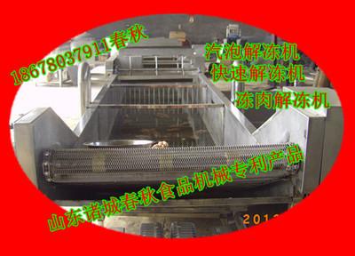 化冰机 化冰解冻机 水产类快速化冰解冻机 卤肉深加工快速解冻机