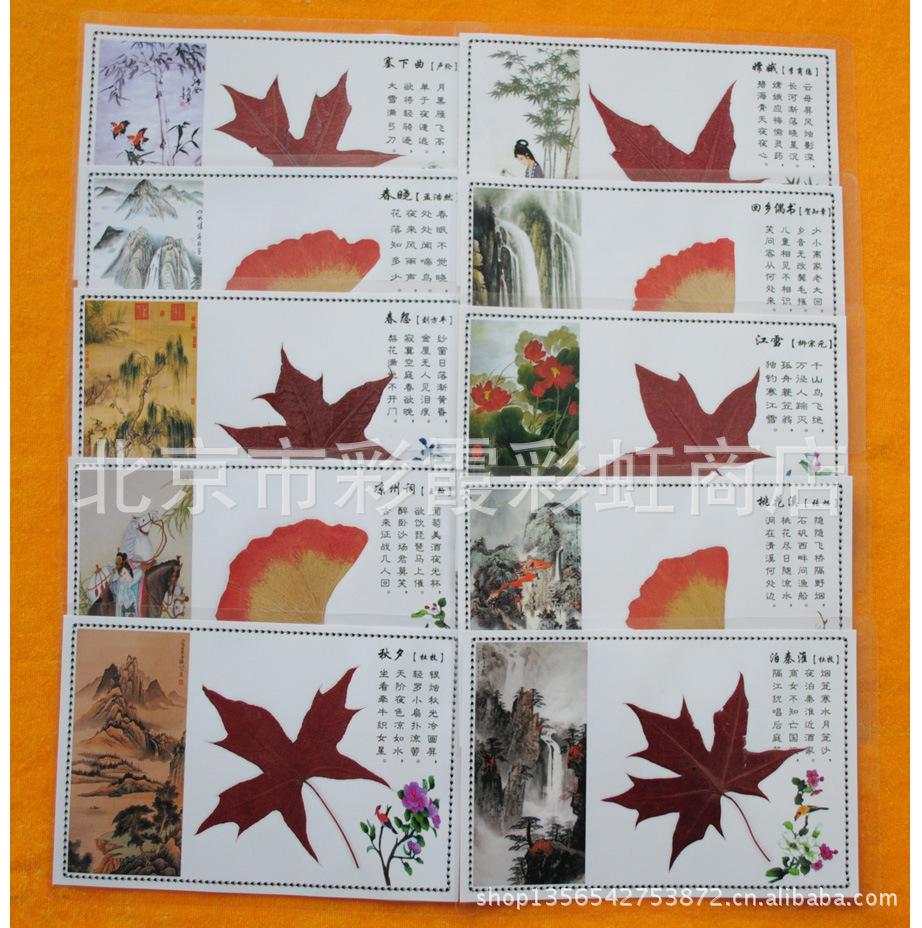 小清新礼品红枫叶贺卡批发银杏叶标本书签真树叶制作礼物赠送定制