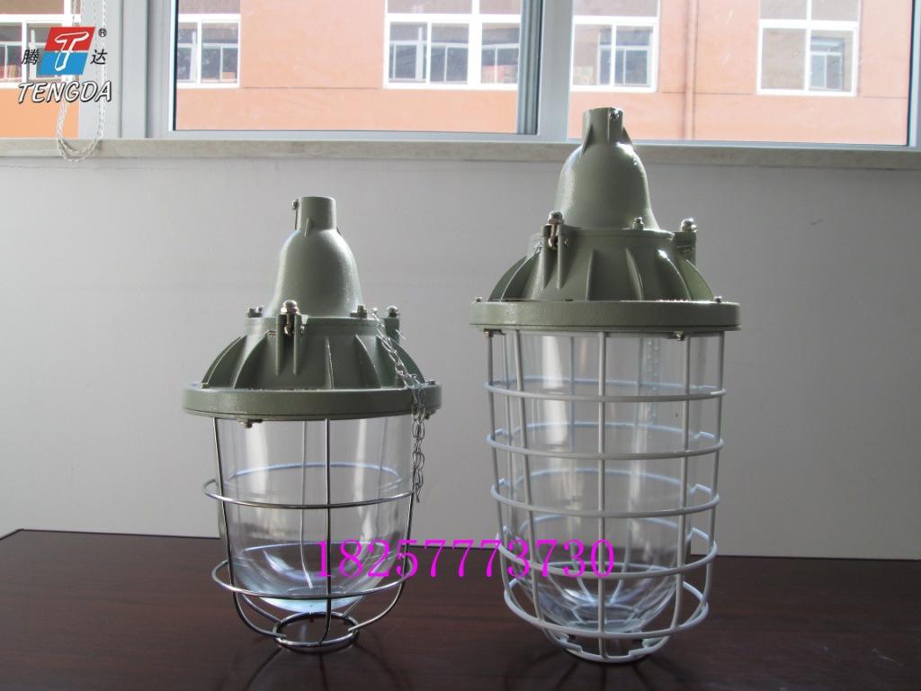 250W防爆节能灯常规款加长款