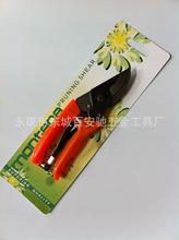 园艺剪刀 园林工具 双色塑柄整枝剪 果树修枝剪BNC-2005