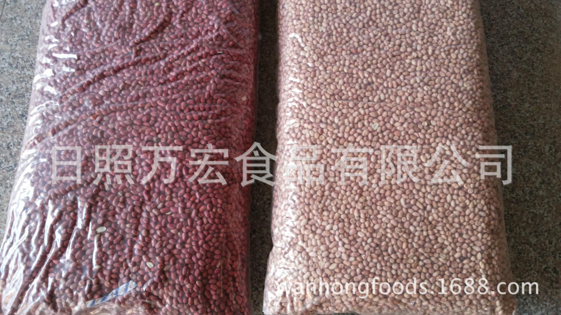 厂家直供出口白沙花生仁,四粒红花生仁,四粒红花生果,花生仁