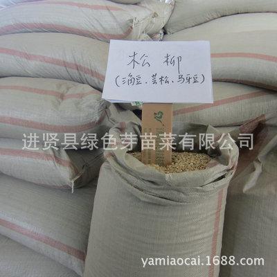 松柳苗种子 三角豌豆马牙豆芸松芽苗菜种子特色阳台蔬菜种子批发