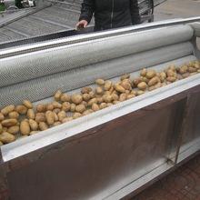 上海根菜类毛辊清洗机,高质量全不锈钢清洗机