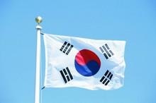 现货90*150cm 韩国国旗4号涤纶旗帜2018年俄罗斯世界杯32强国旗