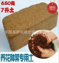养花种菜专用土 无菌椰粉砖 栽培基质 宠物垫材 椰砖 一泡即用