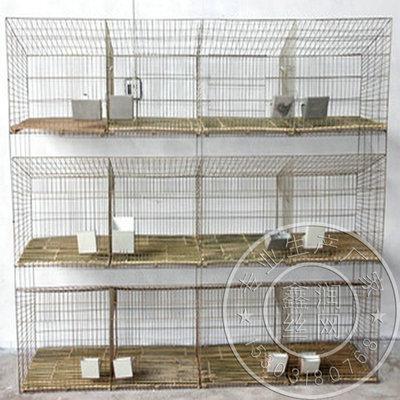 12位子母兔笼 标准养殖兔笼 新型设计 仔母兔笼批发