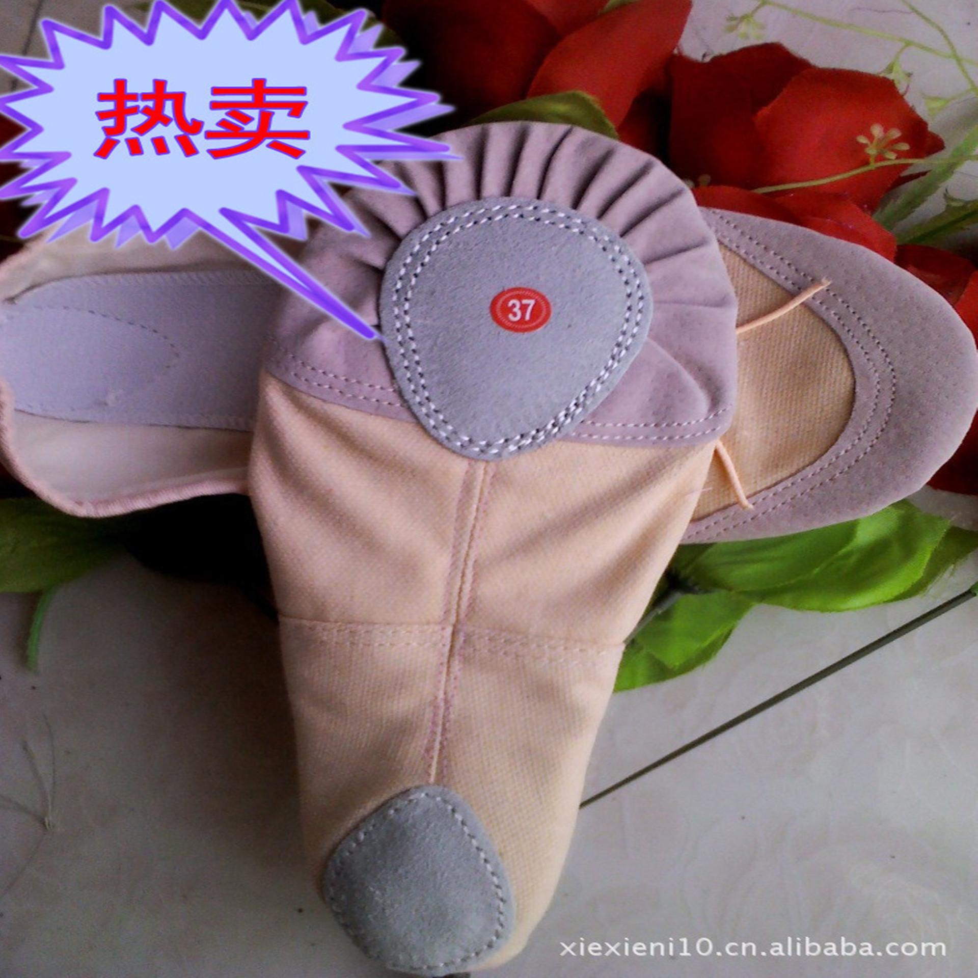 仙舞儿童舞蹈鞋芭蕾舞蹈鞋软底练功鞋成人猫爪鞋幼儿芭蕾舞鞋