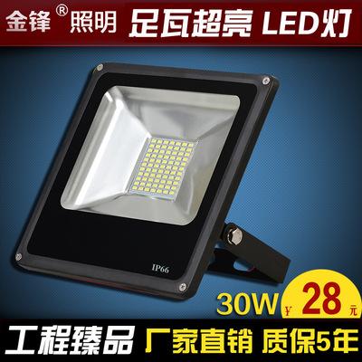 LED贴片投光灯 5730超薄新款 一体化泛光灯30W50W100W 户外投射灯