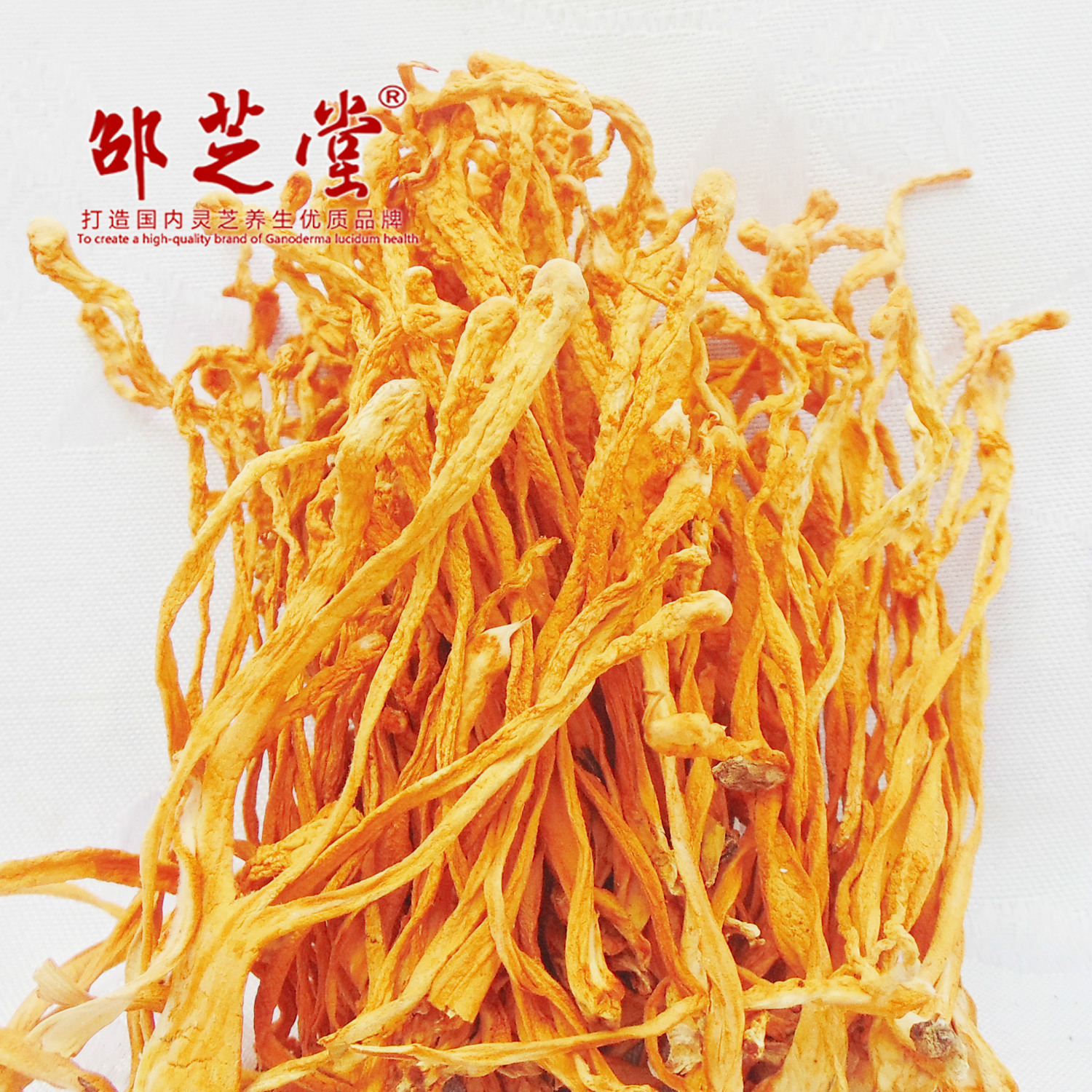 Cordyceps flower first picture 2